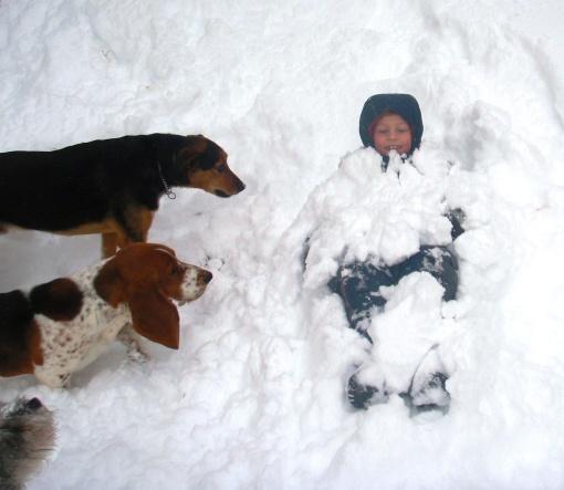 Brady Snowball